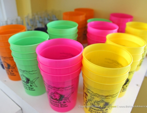 Cups at our gift shop